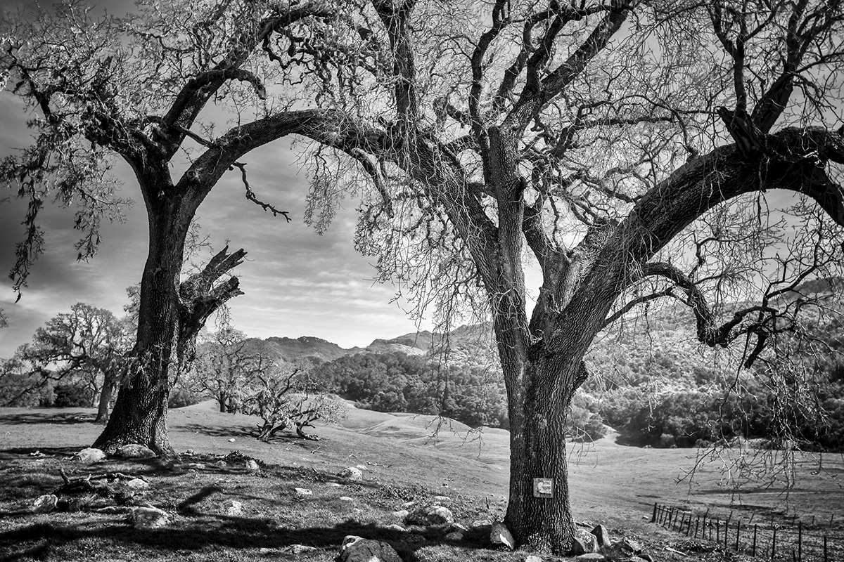 Santa Barbara landscape photography for sale
